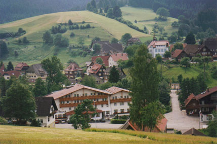 A Village in the Black Forest